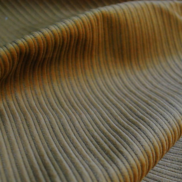 Corduroy fabric_cotton_pale gold