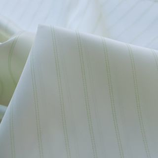 Photography of Fancy Linings - Green Stripe