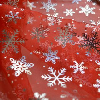 Photography of Christmas Sparkle - Flake Red