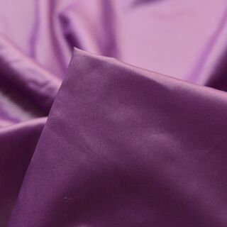 Photography of Microlight - Purple
