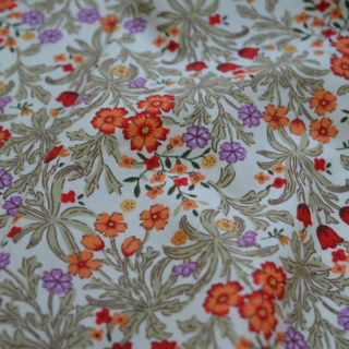 Photography of Poplin Prints - W. Morris - Beige / Coral