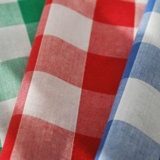 Photography of Gingham - 1 inch -  80/20%