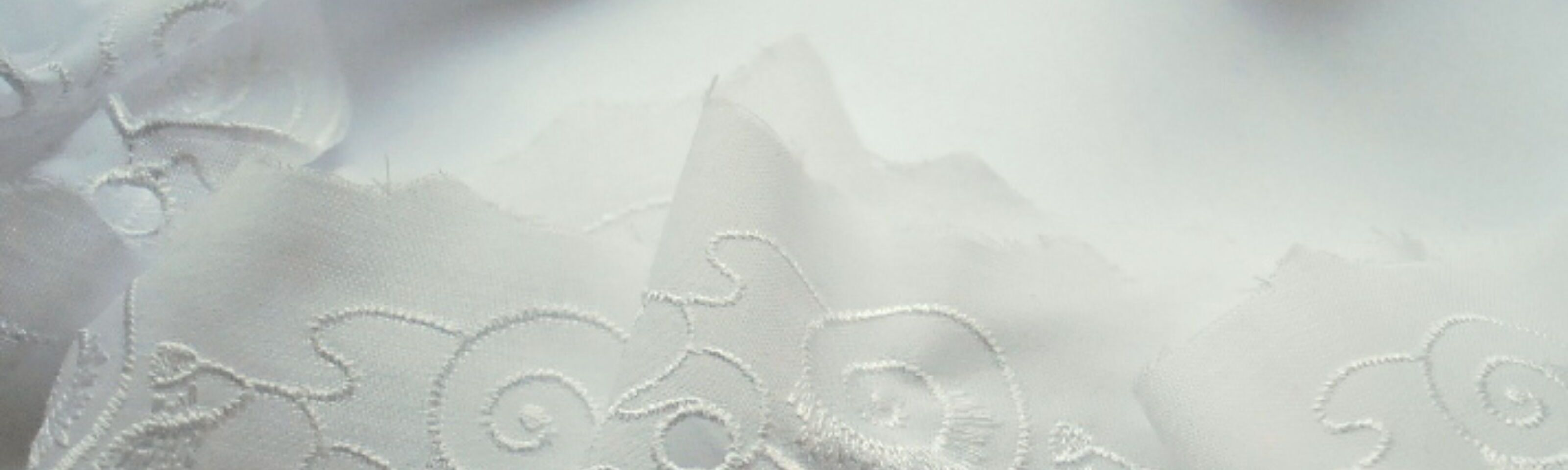 50mm Poly cotton embroidery anglaise trim_ivory_II