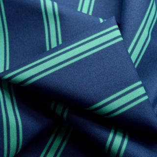 Photography of Water Resistant Canvas - Stripe - Navy/Mint