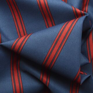 Photography of Water Resistant Canvas - Stripe - Navy/Red