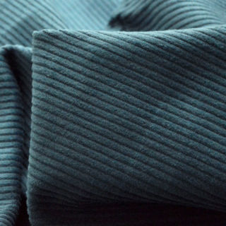 Photography of Corduroy - Oh The Joy - Blue