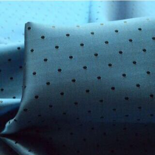 Photography of Spotty Lining - Blue