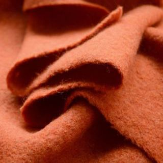 Photography of Pure Luxury - Boiled Wool - Burnt Orange